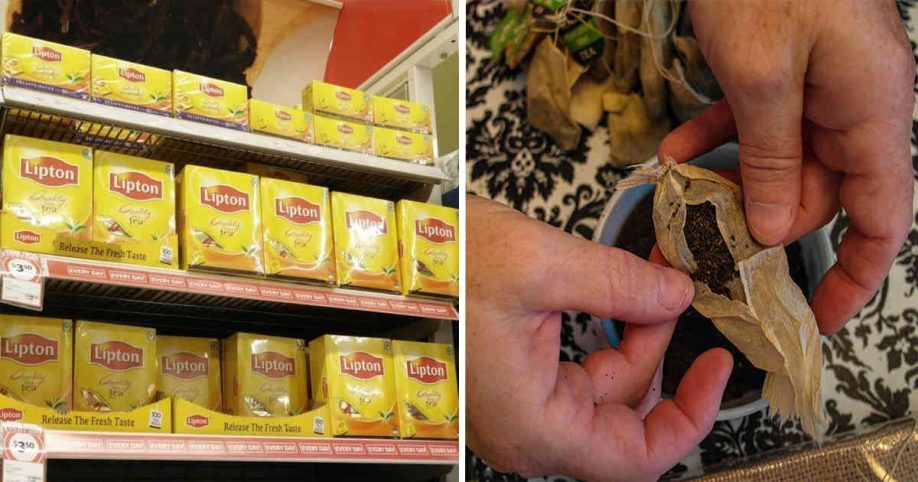 9 Pesticide-filled Teas You Should Never Buy (and the Kind You Should!)