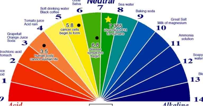 All Cancer Patients Have Too Acidic pH. Here Is the Easiest Way to Check Your pH Balance